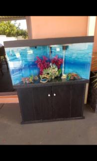 Aquarium fish tank Cooloongup Rockingham Area Preview