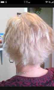 Haircuts $15/ Full Color $45/ Partial Highlites with cut $45.