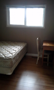A roommate needed in a clean, quiet house near Southgate LRT