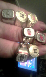 Championship hockey rings
