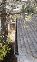 Gutter Cleaning 204 295 1249