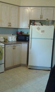 Entire 4 Bedroom Student House for Rent 8 Month or More Kitchener / Waterloo Kitchener Area image 5