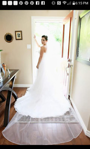 9 foot Ivory cathedral veil