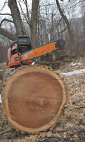 Tree Removal, Lot Clearing, Fire Smarting, Firewood.