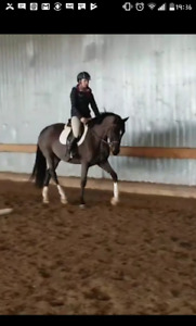 Show stopping 4yr old!! Rio grande lines