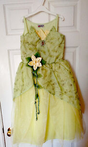 Tiana Princess and the Frog Gown from Magic Kingdom