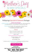 Flash Sale - Wellsprings Medical Spa