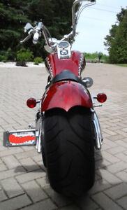 Harley springer 2005