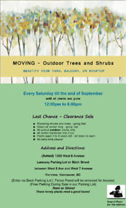 MOVING - Must Sell Potted Outdoor Trees and Shrubs