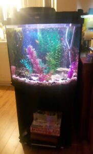 30 gallon bowed aquarium with stand complete ....