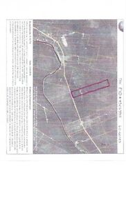 60 ACRES FOR SALE ON ROUTE 116, EAST OF CHIPMAN, NB