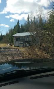 Camp chasse orignal,Chevreuil sur lot terre loué +/-150 arpent