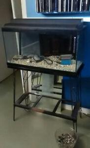 Aquarium 25 gallons tout équipé