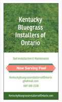 KENTUCKY BLUEGRASS INSTALLERS ONTARIO 647-300-2330 bestprice GTA