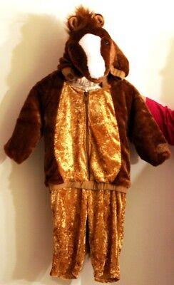 Süßes kleines warmes Fohlen Pferd Pony ca. Gr. 74 für die ganz Kleinen - Süßes Pferd Kostüm
