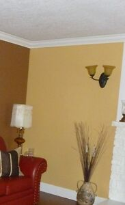 PROFESSIONAL LADY PAINTER, $80/room special!!!!!!!!!!!!!!!!! Kitchener / Waterloo Kitchener Area image 1
