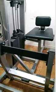 Commercial Life Fitness Horizontal Calf Machine