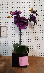 fleur artificiel ,cruche antique , divers cadres