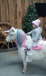 I Believe in Unicorns Pony rides