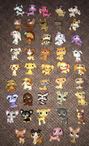 Huge Lot 44 Littlest Pet Shop Only Dogs All Different