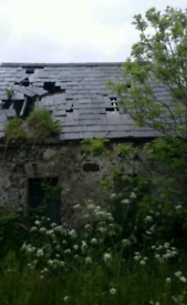 WANTED Bangor Blue Slates and Roofs for Stripping