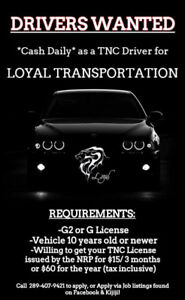 Hiring Drivers - Loyal Transportation