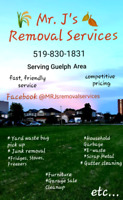 Snow removal, Yard waste/Junk Removal, Gutter cleaning and more