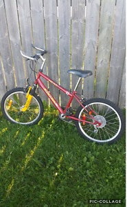 $30 ~ 20 inches Youth bike ~ CCM unisex bicycle