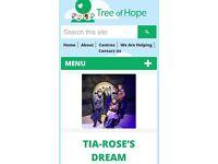 Charity raffle donation request