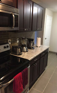TAKE OVER LEASE!! Auburn Park: Apartment newly renovated