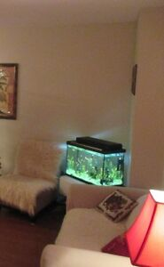 GREAT DEAL!!! 20 GALLON FISH TANK