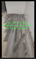 Toronto Wet basement and attic mold removal