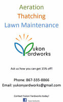 Spring Lawn Cleanup