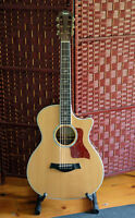 Taylor 814ce Fall Limited Acoustic Guitar