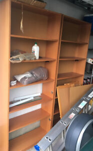 2 Tall Storage Units with Bottom Doors Used