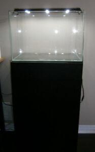 Cadlights 11 Gallon Zen aquarium