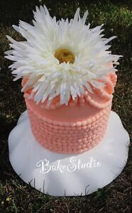 Custom cakes! Kitchener / Waterloo Kitchener Area image 3