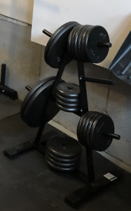 240 pounds of 1 inch weight plates