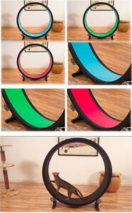 Indoor Cat Exercise Wheel Brand new in the box