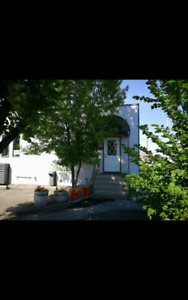 Space For Rent Rent Lease 3715 Edmonton Trail N.E.
