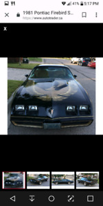 wanted pontiac Trans AM. 1977 to 1981