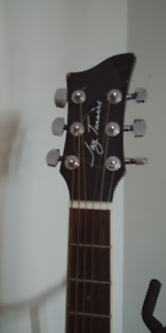 Acoustic Guitar Takamine (case and stand also available)