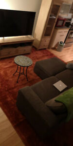 10' x 13' Vista Carpet Rug - Excellent Condition