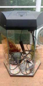 Aquarium avec chauffe-eau et accessoires