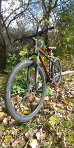 Spaclized mountain bike ...