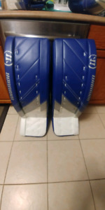 Warrior G4 Pro Goalie Pads and Gloves