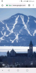 Billet ski