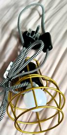 Hanging plug in light