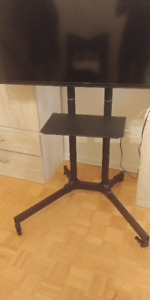 Portable TV stand