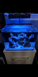 JBJ 45 gallon rimless reef ready all in one system !
